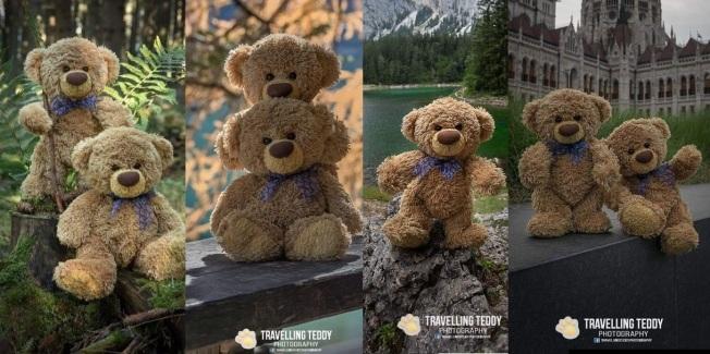 teddybear 22